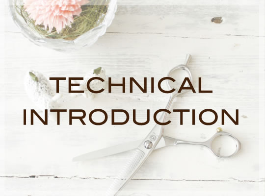 bn_technical_introduction